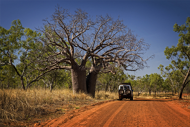 Image of car driving in the Kimberley