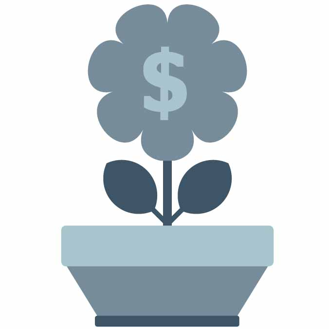 A pot plant with a flower growing, and a dollar sign in the middle